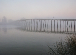 Grizzly Island Bridge in Fog by Karlyn Lewis