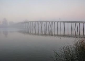 Grizzly Island Bridge in Fog by Karlyn Lewis
